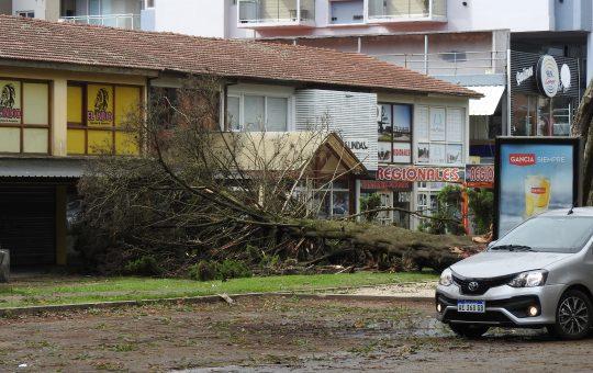 Temporal de lluvia y viento en Pinamar, asi quedo la ciudad este domingo